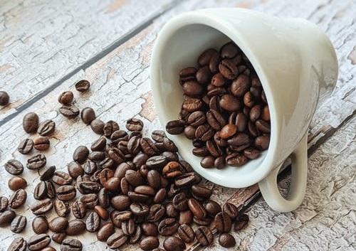 Café gourmet granos